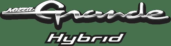 logo-group_grandehybrid
